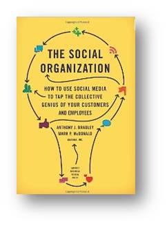 SocialOrganizationBookCover